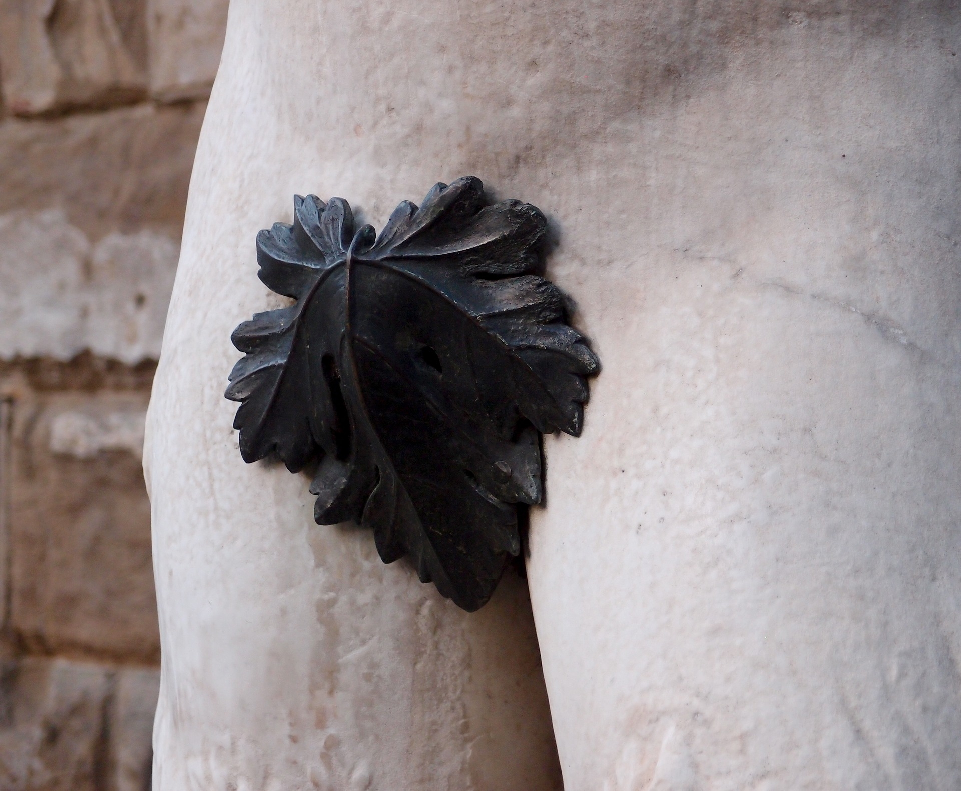 fig-leaf-1657854_1920