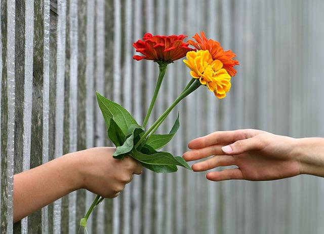 dávání květin